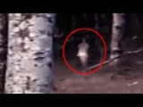 Real Girl Ghost Footage Caught on Tape From Dense Forest!!