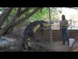 Malcolm Douglas Crocodile Park, Broome, Western Australia