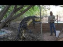 Malcolm Douglas Crocodile Park Broome Western Australia