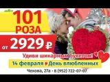 VID_28890318_185129_087.mp4