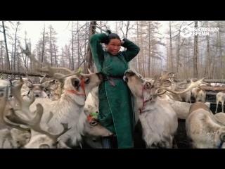 Духа  народ северного оленя