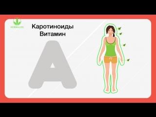 Антиоксиданты  природные источники молодости