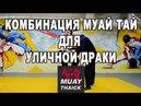 Как научиться драться комбинация Муай Тай для уличной драки
