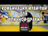 Как научиться драться - комбинация Муай Тай для уличной драки