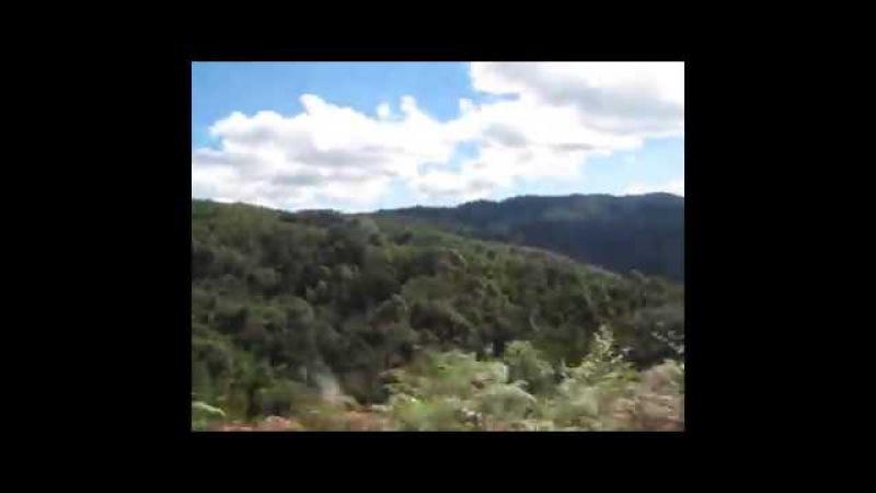 Путь из чайной деревни Лао Бан Чжан вниз, к Новому Бан Чжану и чайной деревушке Л ...