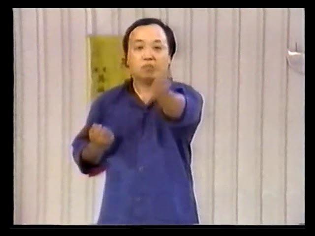 Августин Фонг вин чун Dan Chi Sao