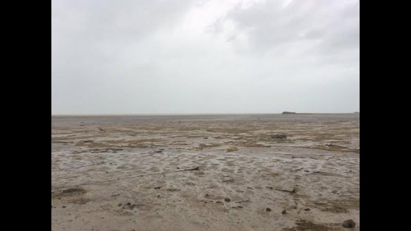 «Ирма» забрала с собой океан: жители Багамских островов в шоке от увиденного