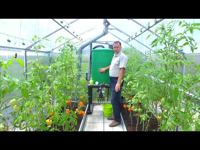 Умная теплица своими руками. Как автоматизировать выращивание овощей FORUMHOUSE