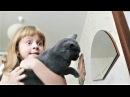 ПРИКОЛЫ 2017 Сентябрь 145 Самые Милые Видео с Животными Смешные Собаки и Кошки Про ...