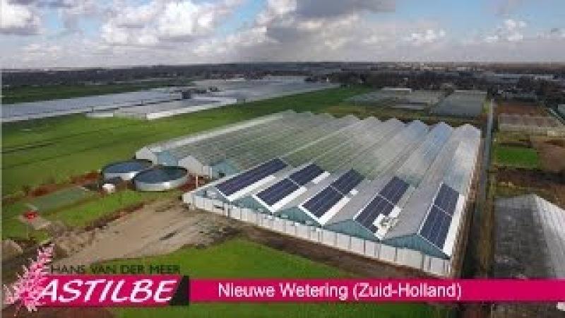 Hans van der Meer Astilbe - Ons bedrijf in vogelvlucht [HD video] [HD]