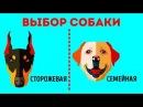 Как Выбрать Себе Идеальную Породу Собаки