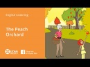 Learn English Listening - Lesson 18. The peach ochard