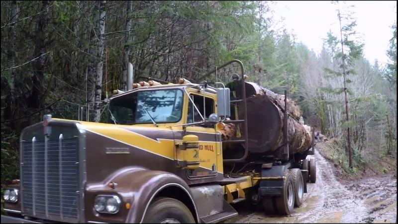 1972 Kenworth W 900 David Hull hauling a three log load