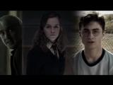 HP & HH & DM vine