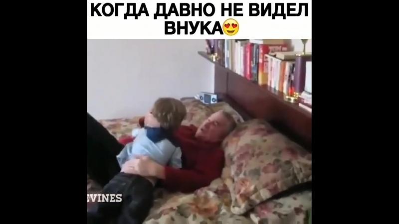 обрадовали деда [ОдноКавказцы]