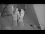 Eisregen 'Satan liebt dich' Full HD