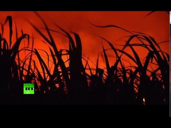 RAW: Hawaii volcano spills lava into ocean, creating acidic plumes