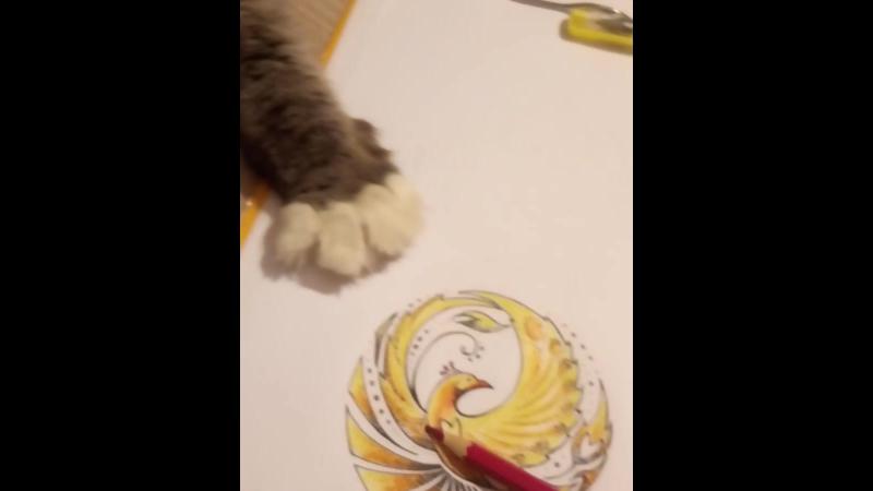 Феникс. Эскиз тату.Котик помогает рисовать. Это ж птичка