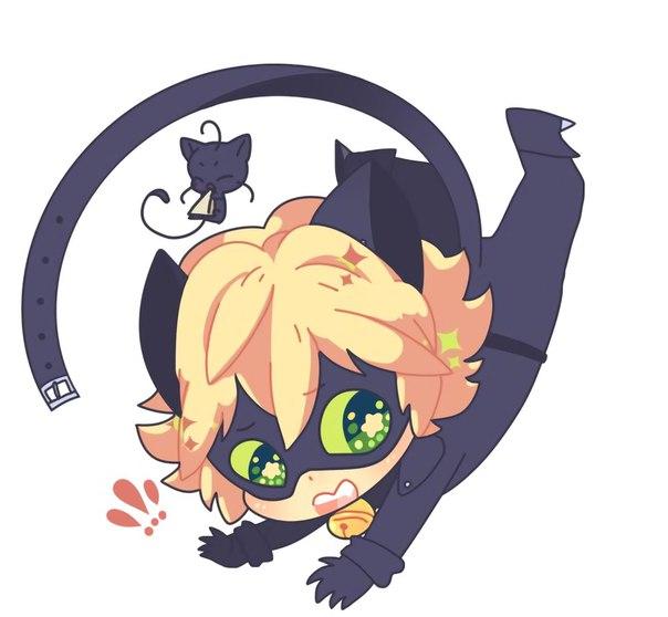 Кот нуар маленький