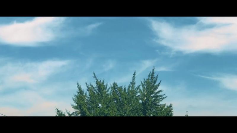 BTS (방탄소년단) LOVE YOURSELF Highlight Reel 起承轉結