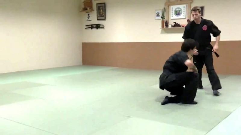 Бойові прийоми ніндзюцу Ninjutsu techniques Ниндзюцу обучение и приёмы ниндзюцу