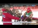 Россия 24 - Зрелищный дрифт на оленьих упряжках: в Ханты-Мансийске прошли большие гонки - Россия 24
