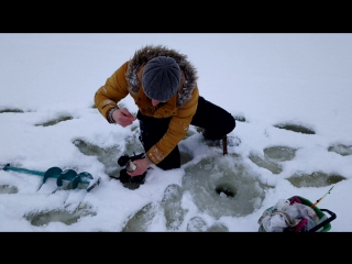 Зимний хариус 18 ноября 2017 года