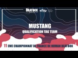 MUSTANG -  - Qualification Tag Team - 2017 French Beatbox Championships
