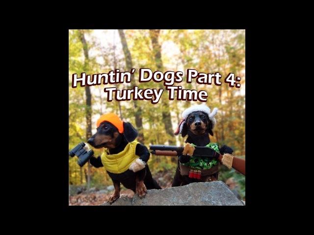 Crusoe Oakley the Huntin' Dogs: Turkey Time