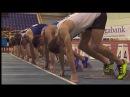 Чемпионат Украины 2018 по легкой атлетике в помещении 60 m hurdles 1 067 Men Final