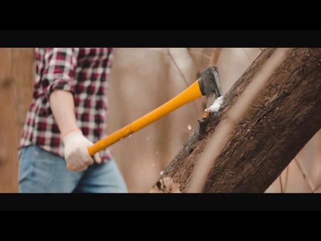 Proekt Triumph Commercial