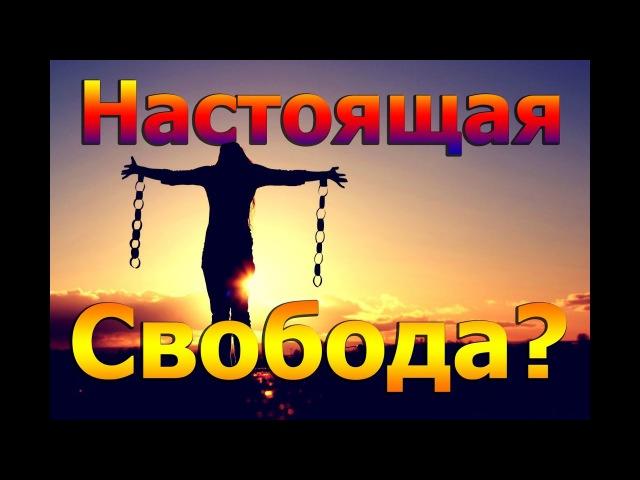 Наша жизнь - это Содом и Гоморра! Человек любит свои грехи! Протоиерей Андрей Тка ...
