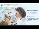 Деструкция стекловидного тела вследствие отложения холестерина у собаки породы пудель Синдром золотого дождя видео щелевой лампой