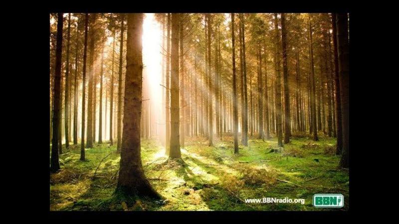 Тихие воды - Примеры веры: Авель