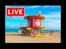 Miami TV LIVE Stream - I Love Miami - Live From Miami