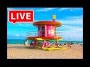 Miami TV LIVE Stream - I Love Miami - Live From Miami
