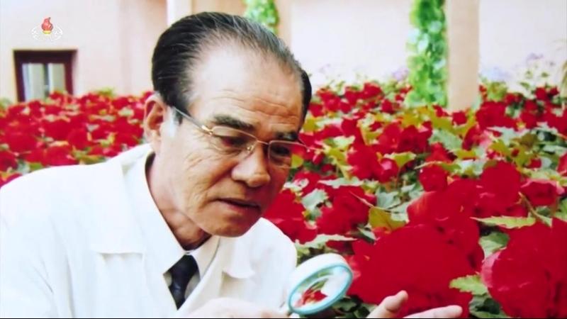 한 로교수가 걸어온 길 –김일성종합대학 계응상농업대학 공훈과학자 교수 박사 박룡웅-