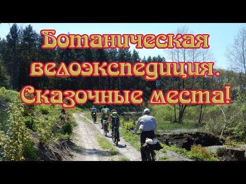 Велопоход - Ботаническая экспедиция. Дуб которому 500 лет. Белецковские плавни. Кременчуг.