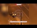 Чемпион России по грэпплингу Умар Вахаев избит в массовой драке со стрельбой в Петербурге