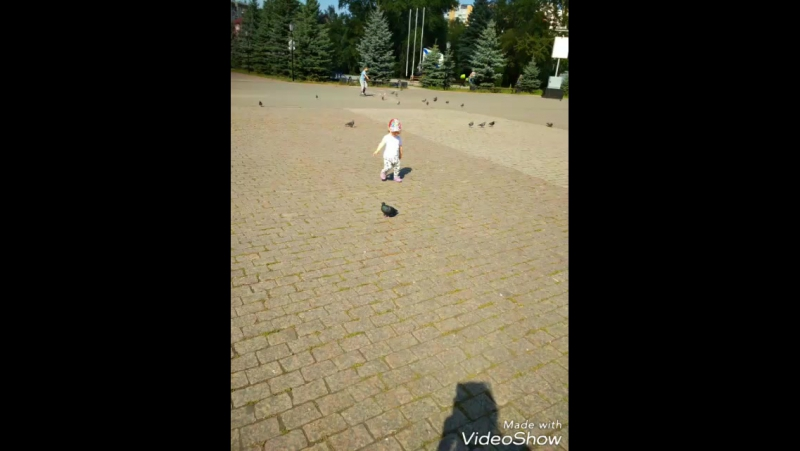 Video_20170902175056433_by_videoshow.mp4