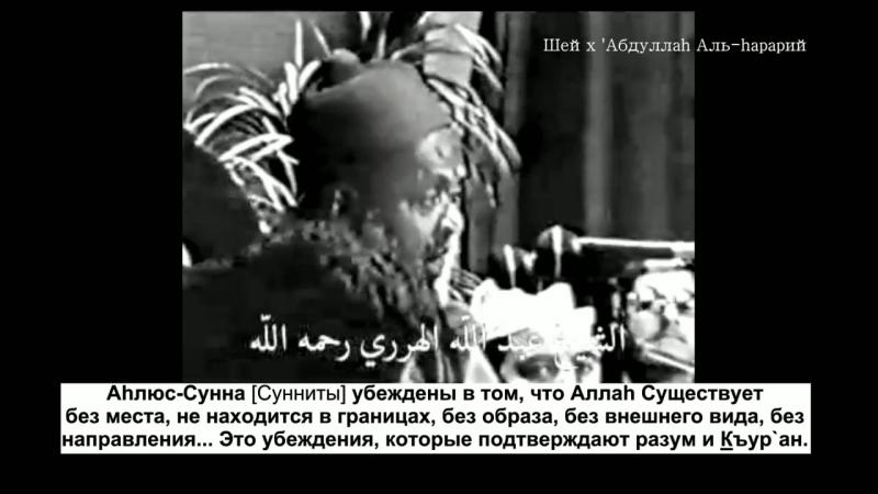 Ваххабиты не знают ни сообственный ваххабизм ни Ислам