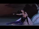 Екатерина Осмолкина и Марсело Гомес в балете Жизель МТ VK урокиХореографии
