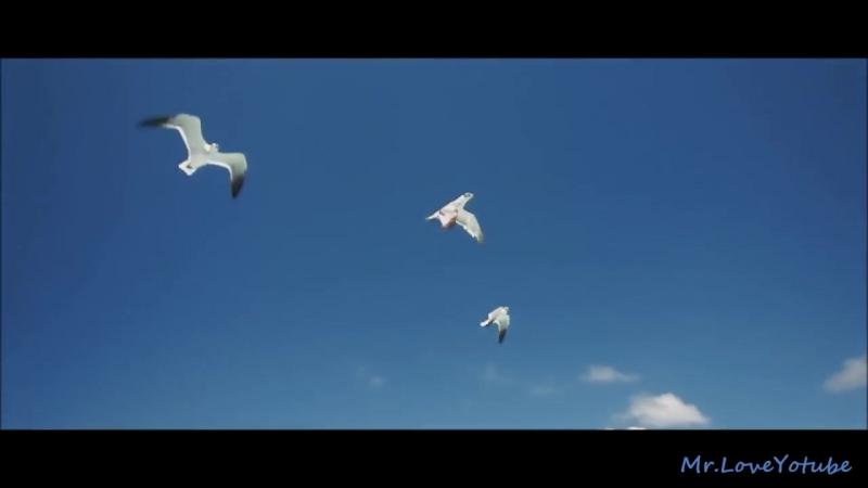 Zeni N - When The Sun Goes Down (The Distance Igi Remix)
