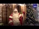 Дед Мороз поздравил пользователей ТАСС с Новым годом