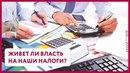Живет ли власть на наши налоги Уши Машут Ослом 30 О Матвейчев