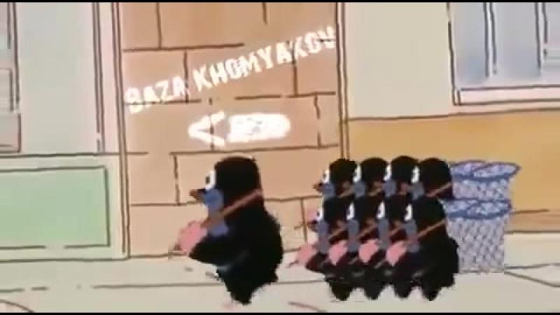Кроты - хомяки
