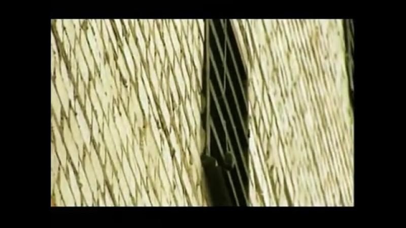 Белая Смерть - 19 серия