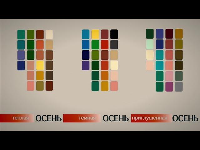 Алексан Мусаелян Колористика Урок№1 Цветотипы