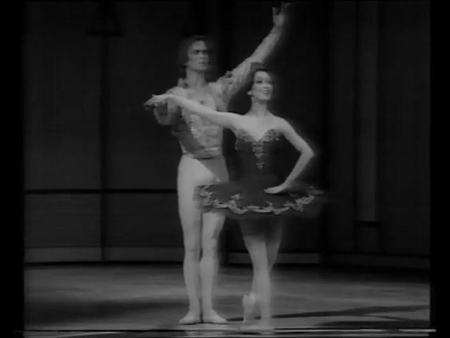 Don Quijote pas de deux R Nureyev Y Morishita NYC TV