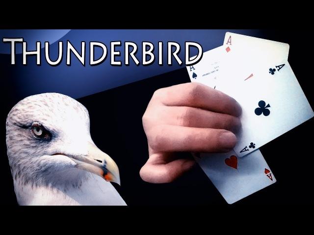 THUNDERBIRD by Lee Asher (ОБУЧЕНИЕ) 🦅🦅🦅 ФОКУСЫ ДЛЯ НАЧИНАЮЩИХ